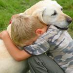 Аллергические реакции у собак